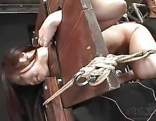 Japanese BDSM tied up broad Vol1 22