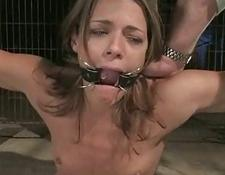pretty babe tied in a cage fucked