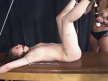 Free extreme lesbian domination porn