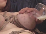 Bond tits Lactation And Breastfeading By Spyro1958 bdsm bondage slave femdom domination by Maran1694