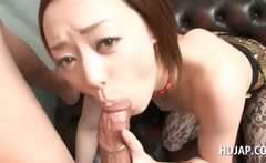fine oriental in pantyhose giving fellatio in close-up