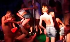 Party bitches fucking and blowing penises in orgy