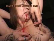 Japanese housewife pain SM