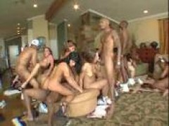 crazy interracial gigantic orgy - white hoes fucking black schlongs