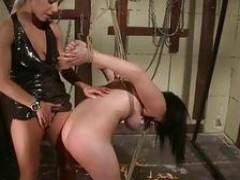 young mistress punishing her sex slave